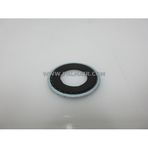 GM V5 SEALING WASHER -31MM