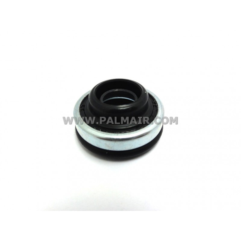 ND 10PA LIP SEAL